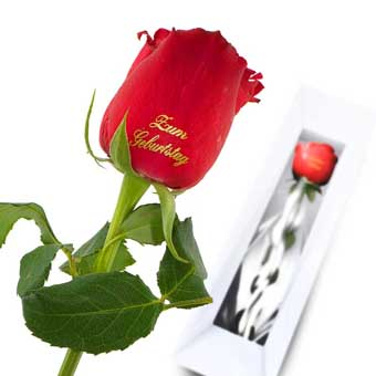 For Birthday Red Rose