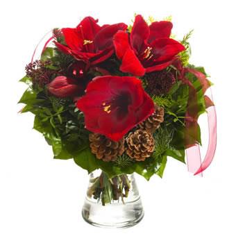 Weihnachtsstrauss Mit Bordeaux Farbenen Amaryllis