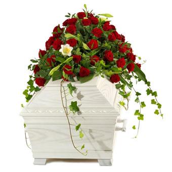 ppige sargauflage mit roten rosen und wei en nelken. Black Bedroom Furniture Sets. Home Design Ideas