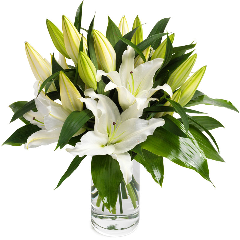 Wonderful White Lilies
