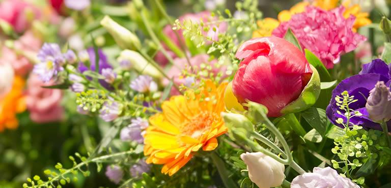 Blumenarten