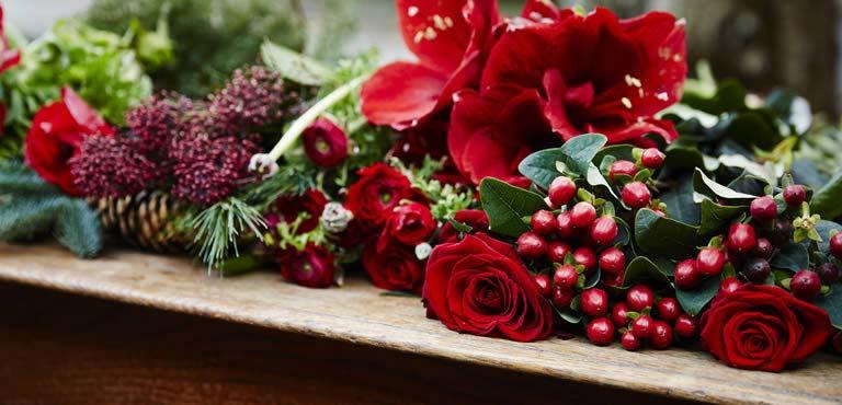 Weihnachtliche Blumen