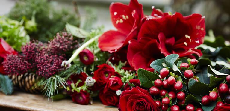 Weihnachtsblumen