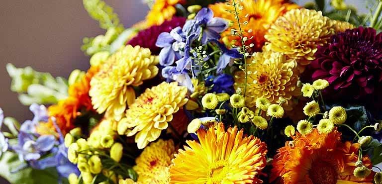Frühlingsblumen online verschicken