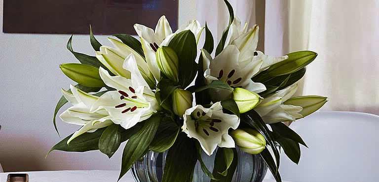 Lilien online verschicken