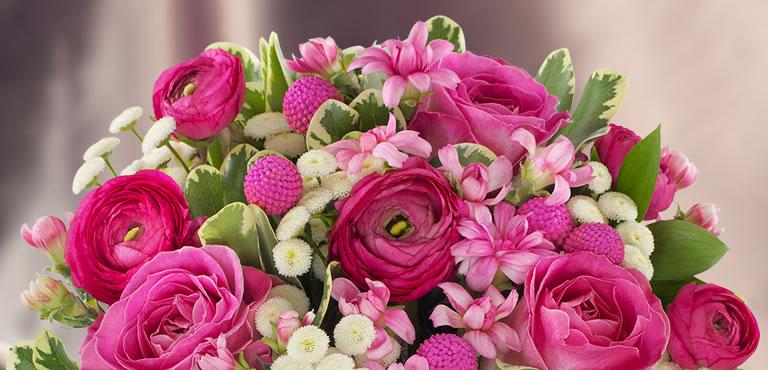 Blumen unter €20