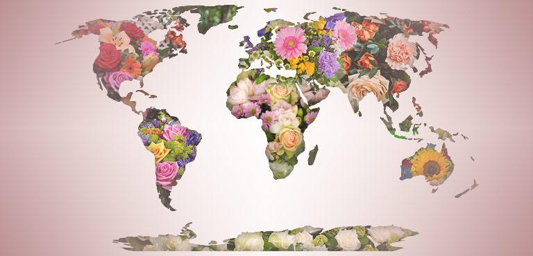 Blumen ins Ausland schicken