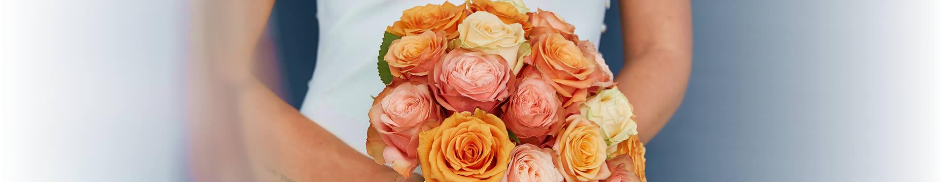 Rose bedeutung whatsapp rote Rote Rosen